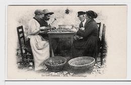LOT  DE 35 CARTES  POSTALES  ANCIENNES  DIVERS  FRANCE  N39 - Postcards