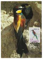 Mozambique Carte Maximum Guêpier D'Europe Merops Apiaster Oiseau 1978 European Bee-eater Bird Maxicard - Oiseaux
