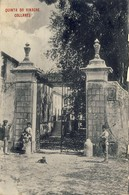 COLARES / COLLARES - Quinta Do Vinagre - PORTUGAL - Lisboa