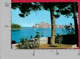 CARTOLINA VG JUGOSLAVIA - ROVINJ - ROVIGNO - Panorama - 10 X 15 - ANN. 1981 - Jugoslavia
