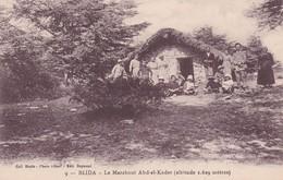 CARTOLINA - POSTCARD - ALGERIA -  BLIDA - LE MARABOUT ABD EL KADER ( ALTITUDE 1. 629 METRES - Algeria