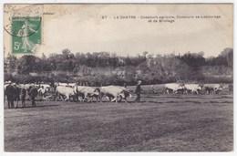 Indre - La Chatre - Concours Agricole, Concours De Labourage Et De Briolage - La Chatre