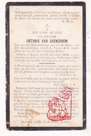 DP Antonia Van Caeneghem ° Huise Zingem 1826 † Drongen Gent 1904 - Andachtsbilder