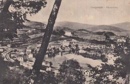 CAMPIOBBI-FIRENZE-PANORAMA-CARTOLINA VIAGGIATA IL 20-3-1943 - Firenze