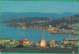 Nouvelle Zélande - Oriental Bay By Night, Wellington, NZ - Nouvelle-Zélande