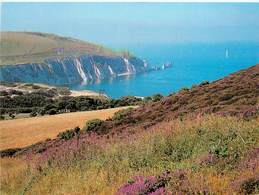CPSM Isle Of Wight                                                                            L2703 - Angleterre