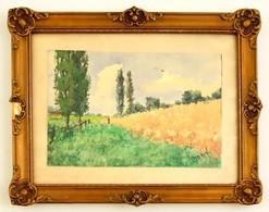 Neogrády Jelzéssel: Faluhatár. Akvarell, Papír, Jelzett, üvegezett Keretben, 17×27 Cm - Altre Collezioni