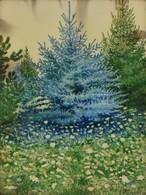 Dr Pécsi János (1885-?): Ezüstfenyő. Akvarell, Papír, Jelzett, üvegezett Keretben, 40×30 Cm - Altre Collezioni