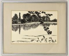 Gy. Szabó Béla (1905-1985): A Termereni Tó. Fametszet, Papír, Jelzett, üvegezett Keretben, 44×52 Cm - Altre Collezioni