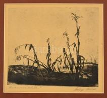 Szőnyi István (1894-1960): Kukoricakórók. Rézkarc, Papír, Jelzett, Paszpartuban, 19×23 Cm - Altre Collezioni