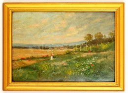 Ujváry Ignác (1860-1927): Női Alak Tájban. Olaj, Karton, Jelzett, Keretben, 34×49 Cm - Altre Collezioni