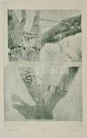 Olvashatatlan Jelzéssel: Sárospatak. Rézkarc, Papír, Jelzett, 29×19 Cm - Altre Collezioni