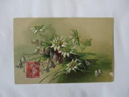 FLEURS EN RELIEF 1910 C. KLEIN  P. F.  B S. 1882  PETITE TACHE BLANCHE EN BAS A DROITE - Klein, Catharina