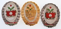 3db-os Vegyes Militária Tétel, Benne 'Kiváló Rajparancsnok', 'Élenjáró Szakaszparancsnok' és 'Élenjáró Zászlóaljparancsn - Coins & Banknotes