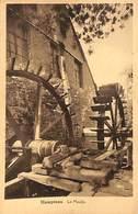Hampteau - Le Moulin (Edit. J. Delneuville) - Hotton