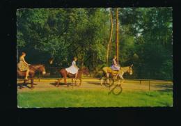 Emmen ZOO - Noorderdierenpark - Ezeltje Rijden [AA7-1.309 - Paesi Bassi