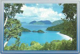 V2843 Virgin Islands - Trunk Bay / Non Viaggiata - Isole Vergini Americane