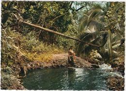 Tahiti - Sous-bois Polynésien - & Nude - Nus Adultes (< 1960)