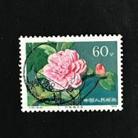 ◆◆CHINA 1979  Chrysanthemum Petal  60f Multi (10-9)  USED  592 - 1949 - ... People's Republic