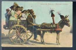 Saluti Da Palermo - Carretto Siciliano - Viaggiata 1908 - Rif. 21520 - Palermo