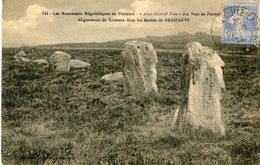DOLMEN(BRASPARTS) - Dolmen & Menhirs
