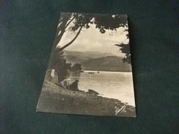 PICCOLO FORMATO LAVANDAIE IN AZIONE LAGHI SILANI FOTOGRAFICA 1946 ANNULLO MARZI COSENZA - Paesani