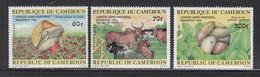 1984 Cameroun Agriculture Corn, Potatoes & Cattle Set Of 3 MNH - Cameroun (1960-...)