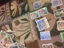 AUSTRALIA STEMMI CANGURO - Stamps