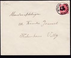Denmark 1933 Mi 0202 Send From SKRINGSTRUP SKALST To KOPENHAGEN Valby................................................426 - 1913-47 (Christian X)