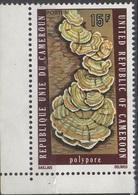 CAMEROUN  __  N°582__NSG  VOIR SCAN - Cameroon (1960-...)