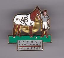 Pin's POLOTEAM SIGNE ARTHUS BERTRAND - Badges