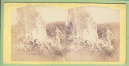 MARCHENOIR : Le Chêne Du Comte Thibaut Vers 1860 - 1870 . Rare. Forêt. Photo Stéréoscopique. 2 Scans. Lire Descriptif - Fotos Estereoscópicas