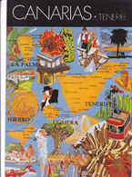 ESPAGNE / ILES CANARIES / LOT DE 2 CARTES GEOGRAPHIQUES / TENERIFE ET GRAN CANARIA - Maps