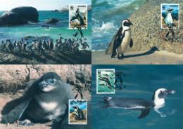 Ref. 7445 * NEW *  - NAMIBIA . 1997. JACKASS PENGUIN. PINGUINO DE ANTEOJOS - Namibia (1990- ...)