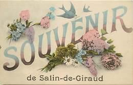 - Dpts Dv -ref-AE06- Bouches Du Rhône - Salin De Giraud - Souvenir De .. - Carte Bon Etat - - France