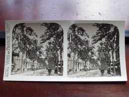 NICE : Avenue De La Victoire - S. 93 - 3928 ( Maison De La Bonne Presse VUES De FRANCE ) Stereo Photo ! - Photos Stéréoscopiques