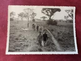 Afrika Afrique - Afrique