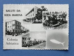 Cartolina Igea Marina - Colonia  Adriatica - Varie Vedute - 1959 Ca. - Rimini