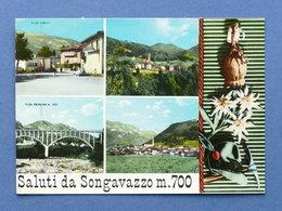Cartolina Songavazzo - Varie Vedute - 1970 - Bergamo