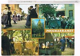 CPM  POUCHARRAMET JOURNEE DU TERROIR   CE311 - Autres Communes