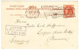 1898 2cent Ganzsachenkarte Aus Hamilton Nach Lupow Kreis Stolp; Rückseitig Klebestellen - 1851-1902 Victoria