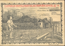 LOTTERY TICKET FOR THE BLAJ CHILDRENS ORPHANAGE, 1920, ROMANIA - Lottery Tickets