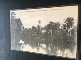 La Riviere Bia Palmiers - Ivory Coast