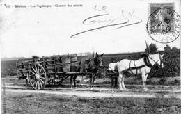 CPA De BEZIERS (Hérault) - Les Vendanges. Charroi Des Raisins. Edition Le Chameau. N° 102. Circulée En 1908. B état. - Beziers