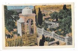 JERUSALEM  - Jardin De Gethsemani -  L 1 - Israel