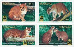 Ref. 74189 * NEW *  - SENEGAL . 1997. AFRICAN GOLDEN CAT. GATO DORADO AFRICANO - Senegal (1960-...)