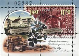 Ref. 367634 * NEW *  - SERBIA & MONTENEGRO . 2010. DAY OF THE POST. DIA DEL CORREO - Montenegro