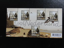 Pays-Bas - Bloc Mooi Nederland Vlissingen (moulin, éolienne, Goeland, Limicole) - Blocks & Sheetlets