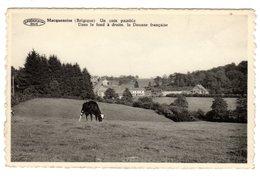 CPSM Photo Macquenoise Près Moignies Seloignes Hainaut Belgique Belgie Frontière Franco Belge Douane Vache édi Preillon - Momignies