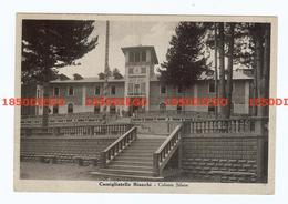 CAMIGLIATELLO  - COLONIA SILANA  F/GRANDE VIAGGIATA 1941 ANIMAZIONE - Cosenza